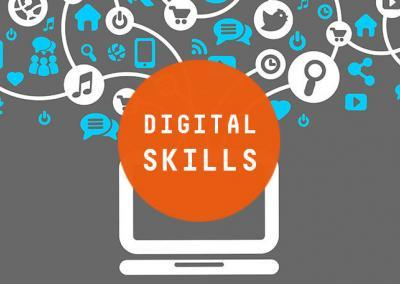 Digital Skills in Cultural Heritages